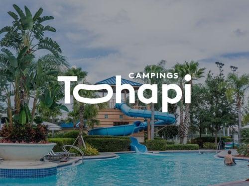 Logo de Tohapi, référence AntVoice